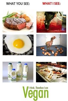 Thats why I´m vegan.
