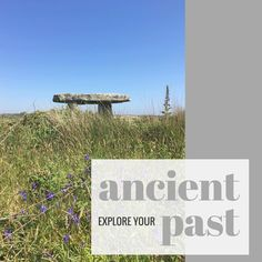Day 23 of 31 days of inspirational actions 💕 #selflove #inspiration #explore #ancientlandscape #ancestors #ancientbritain