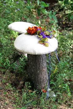 Mushroom stool props for Fairy shoots ~ Forever Portraits