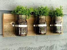indoor kitchen herb garden - Google Search