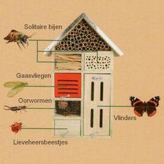 Groot insectenhotel 7 gastenkamers -