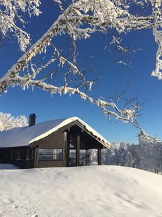 Ålhytte, Leveldåsen, Norway House Seasons, Wooden House, My Dream, Norway, Ranch, Cabin, Architecture, House Styles, Nature