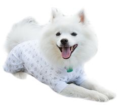 Cover Me by Tui Adjustable Fit Puppy Print Pullover with Short Sleeve for Pets XLarge -- You can find out more details at the link of the image. (This is an affiliate link) #DogApparelAccessories