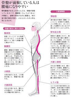 慢性的な腰痛に悩まされるかどうかは、普段の姿勢で決まります。壁を背にして立ったとき、腰に手がすっと入るのが腰に負担のかかりやすい「反り腰」。