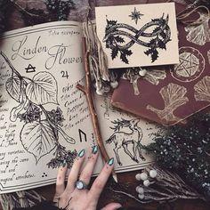 Волшебная Кладовая • Магия вокруг нас • Викка