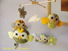 these owls are so cute