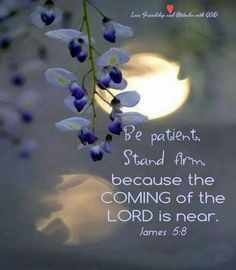 """wiirocku: """"James (NIV) - You too, be patient and stand firm, because the Lord's coming is near. Biblical Verses, Prayer Verses, Bible Verses Quotes, Bible Scriptures, Faith Quotes, Son Quotes, God Prayer, James 5, Jesus Is Coming"""
