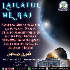 Islamic, History, Movie Posters, Historia, Film Poster, Billboard, Film Posters