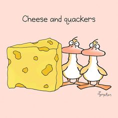 Yesterday was National Cheese Day.