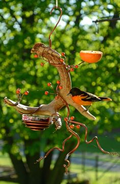 How to Plant Potted Flowers Outdoors in the Soil : Garden Space – Top Soop Oriole Bird Feeders, Humming Bird Feeders, Homemade Bird Feeders, Diy Bird Feeder, Garden Crafts, Garden Projects, Bird Feeding Station, How To Attract Birds, Backyard Birds