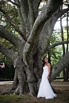 Bride in a tree