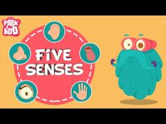 Binocs with a bag of five senses. Do you know what are the five senses of a human being? Have you ever wondered how important are your eyes, ears, nose, tongue and skin? Binocs as he tells you more about the five senses. Five Senses Preschool, 5 Senses Activities, My Five Senses, Preschool Themes, Science Activities, 1st Grade Science, Kindergarten Science, Science Classroom, Kindergarten Classroom
