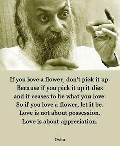 Love is not possession Love is appreciation #Flower #Love