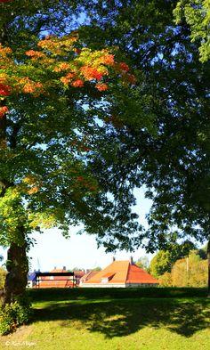 Gamlebyen i Fredrikstad, Norway - Autumn by Kari  Meijers on 500px
