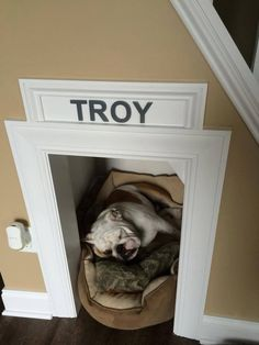 Bailey needs a nook like this! Especially since she's been snuggling under an end table lately lol