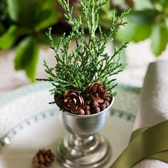 Juniper Sprig Place Setting