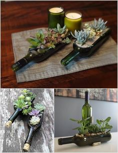 10 Cool Succulent Planter Ideas for Your Home 10