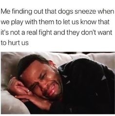 30 Relatively Stupid Sh*tposts To Help You Zone Out - Memebase - Funny Memes funny captions funny humor funny memes animal funny Funny Animal Photos, Animal Memes, Funny Animals, Funny Pictures, Cute Animals, Memes Humor, Funny Jokes, Hilarious, Funny Texts