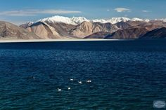 Ladakh: For the mountains and Tibetan heritage. Trek up the Himalayas. Visit the nine-storeyed Leh Palace and the Shanti Stupa built to promote world peace. Go river-rafting in the summer or explore via mountain bikes and cycle-back tours. Attend the 3-day or 10-day vipassana course at the meditation centre. #CoxandKings