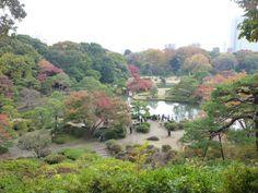 「Rikugien」(Garden) Tokyo Japan