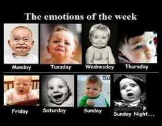 The emotions of the week