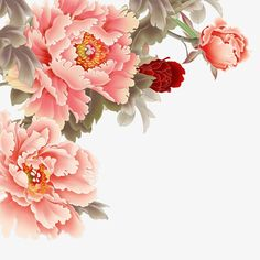 This PNG image was uploaded on March am by user: greeter and is about Chinese, Chinese Style, Flowers, Peony, Peony Clipart. Japanese Flower Tattoo, Japanese Flowers, Peony Painting, Silk Painting, Flower Background Wallpaper, Flower Backgrounds, Peony Flower, Flower Art, Vintage Flowers