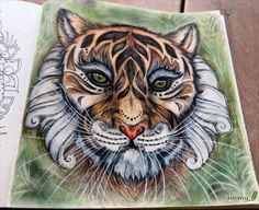 African Tiger ...outsid the lines. Magical Jungle , Johanna Basford.