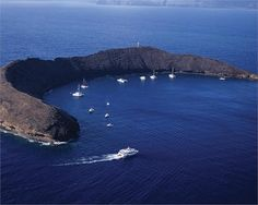 Snorkeling with the Pacific Whale Foundation at Molokini Crater, Maui