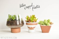 Leather Wrapped Planters