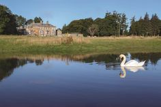 Kilcooley Estate, a Luxury Home for Sale in Other Ireland, Cities In Ireland -  | Christie