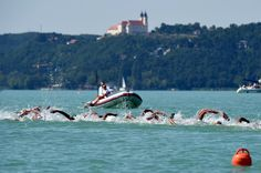 Athletes compete in the men's 10 km open water swimming event at the 2017 FINA World Championships in Balatonfured, Hungary, on July 18, 2017. / AFP PHOTO / ATTILA KISBENEDEK