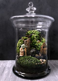 Star Wars Episode VI VII Terrarium: Yoda and Ewoks by DoodleBirdie
