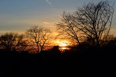 New Year's Day sunset - Greenwood Cemetery Brooklyn, NY - deux lunes