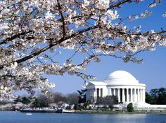 washington dc | Washington DC Housekeeper, DC Housekeeping, DC Nanny, DC Staffing ...