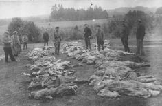 27 murder victims found in Pennsylvania woods, 1949 (Still unsolved)
