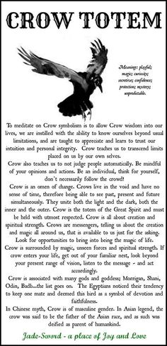 Some things about the Crow as a Spirit Animal Guide Wiccan, Magick, Witchcraft, Crow Totem, Raven Totem, Art Indien, Animal Spirit Guides, Crow Spirit Animal, Animal Medicine