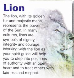 ∆ Spirit Animals...Lion spirit guide