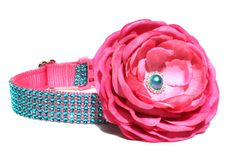 Pink and Turquoise Dog Collar by Wagologie