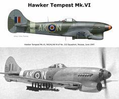 Hawker Tempest Mk. VI Air Force Aircraft, Ww2 Aircraft, Fighter Aircraft, Military Aircraft, Fighter Jets, Drones, Fighting Plane, Hawker Tempest, Hawker Typhoon