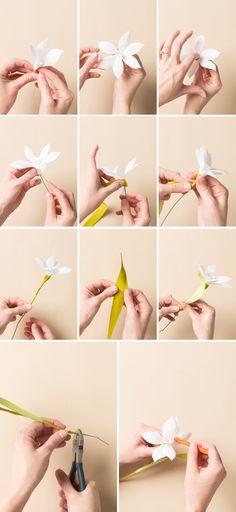 Molde para hacer narcisos de papel crepe (3)