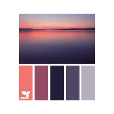 design seeds | for all who ♥ color ❤ liked on Polyvore featuring color inspiration, colors and seeds