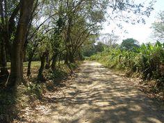 Costa Rica Road to Beach by Roderick MacKenzie via Flickr