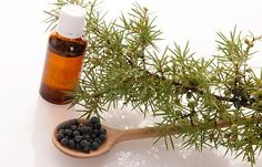 How To Get Rid Of Cellulite - Essential Oils For Cellulite