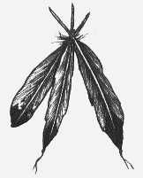 I think I should add on to my tattoo with another feather...