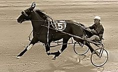 Bret Hanover-Standardbred who won the triple crown of harness racing for pacers.