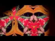 To Be Kaleidoscopes by Randy and Shelley Knapp