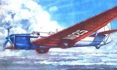 (N/A) Tupolev ANT-25 Soviet Long Range Record Setter