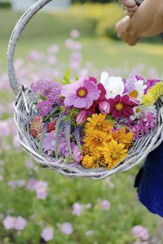 Flowers For Sale, Love Flowers, Fresh Flowers, Beautiful Flowers, Birthday Celebration, Birthday Wishes, Herb Farm, Farm Stand, Healing Herbs