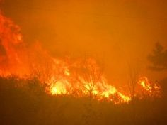 Dead Crops, Extreme Drought And Endless Wildfires Are Now The New Normal In America