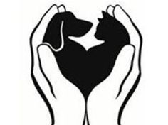 dog and cat outline - Google Search
